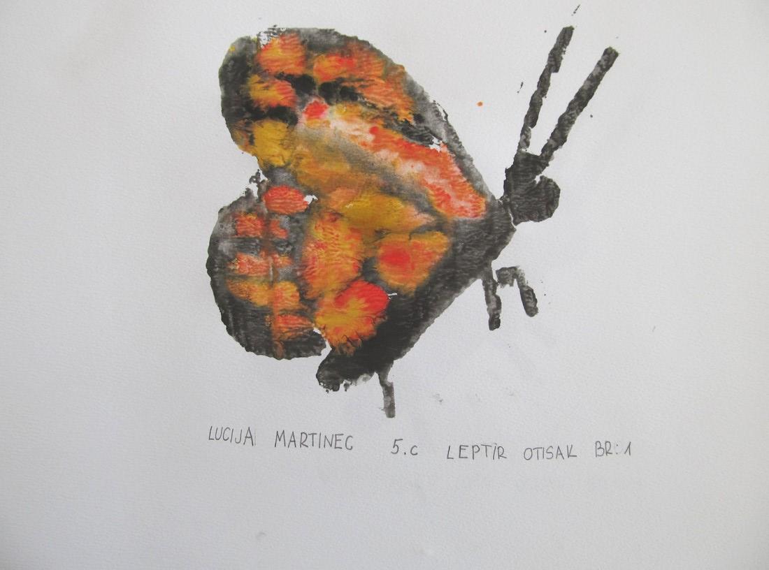 Narančasti leptir