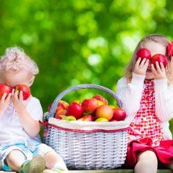 Monolog jedne jabuke