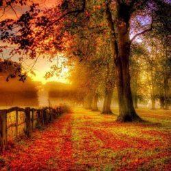 O jeseni