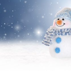 Volim zimu