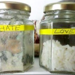 Poludjela riža