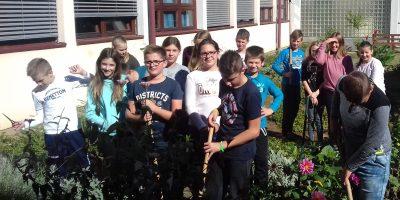 Izvještaj o čišćenju školskog vrta
